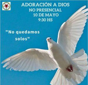 """Adoración a Dios no presencial, 10/5/2020. Tema. """"No quedamos solos"""". Paloma con el cielo azul de fondo."""