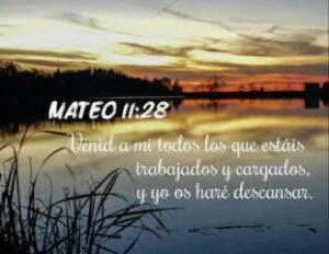 Mateo 11:28