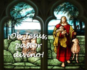 ¡Oh Jesús, pastor divino!